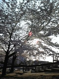 春 014.JPG